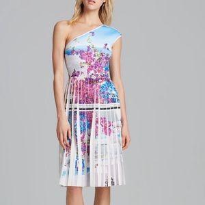 NWT Gorgeous Clover Canyon Santorini Pleated Dress